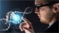 Compliance Práctico: el ADN de la empresa Los delitos económicos